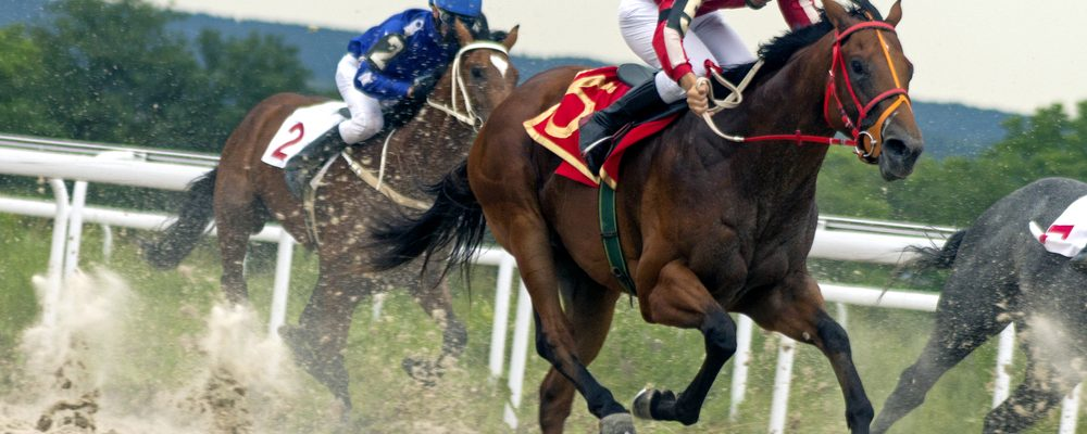 Winner's Circle, 3 Additional Barns to Be Added to Oaklawn Park
